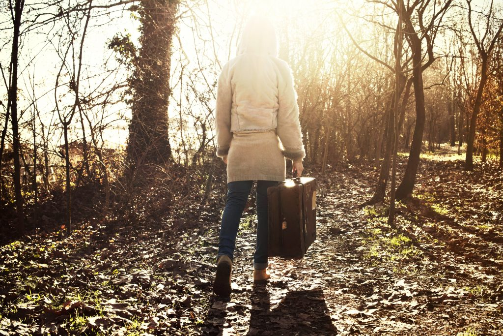 traveler woman follows the light of hope in the mysterious forest