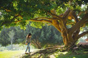 Woman walking under tree